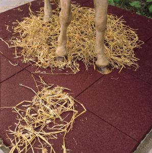 Резиновые маты в конюшне