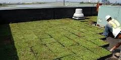 Иконка зелёной крыши